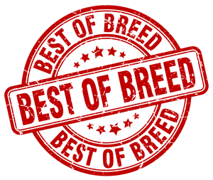 IT Security Best of Breed
